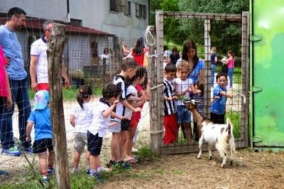 Agriturismo marche vacanza per famiglie ristorante for Piani di fattoria georgia